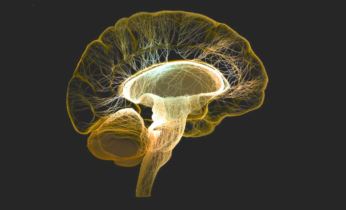 6 советов для мозга