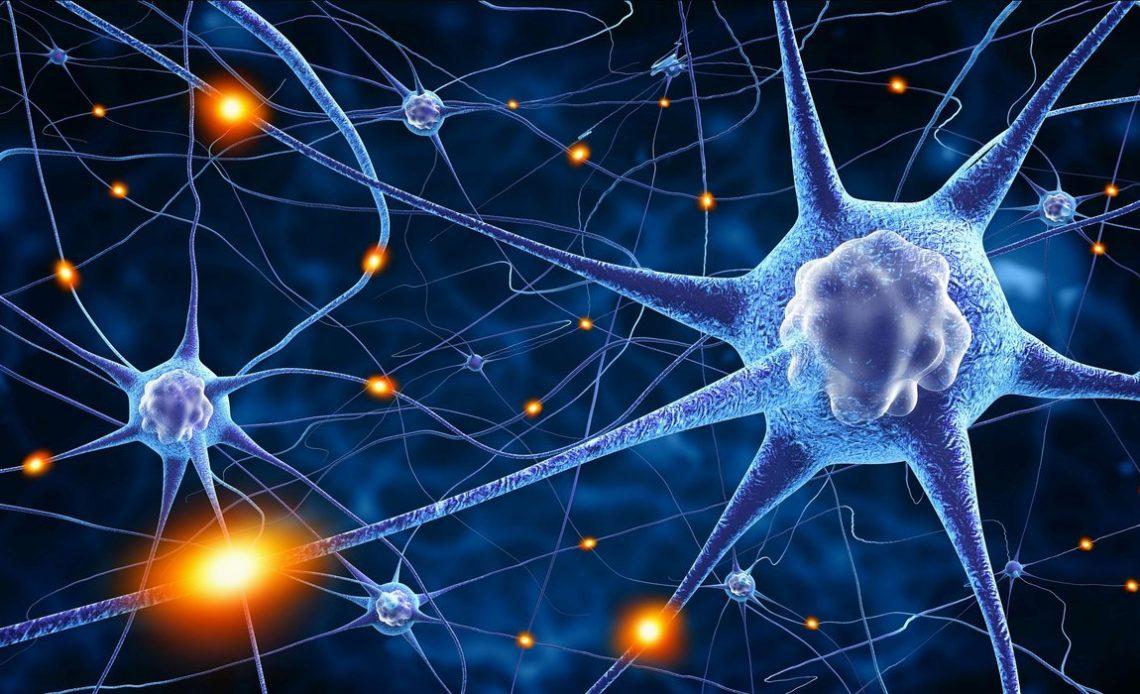 Что такое нейрон?